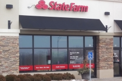 State Farm - Shermin Willis